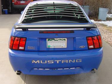 Carbon Fiber 99-04 Mustang Bumper Letters Inserts
